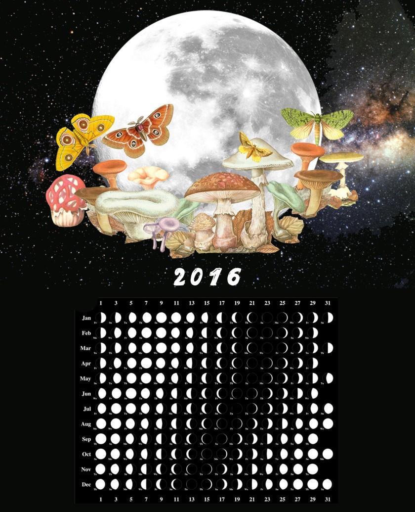 mooncalendar2016